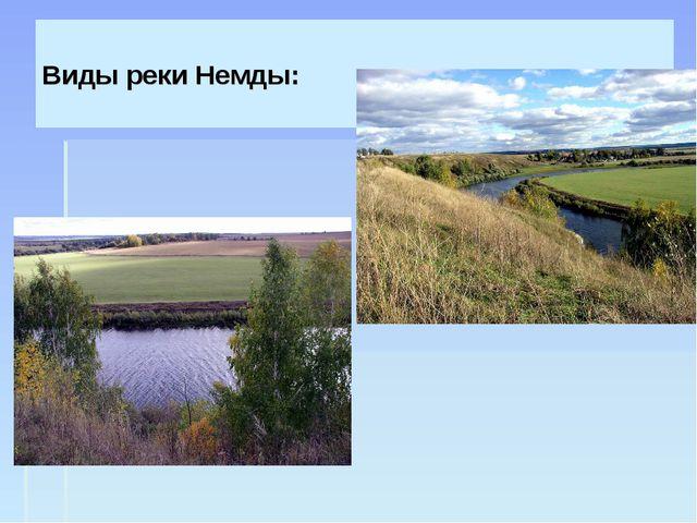 Виды реки Немды:
