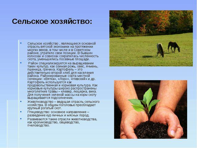 Сельское хозяйство: Сельское хозяйство , являющееся основной отрасль вятской...