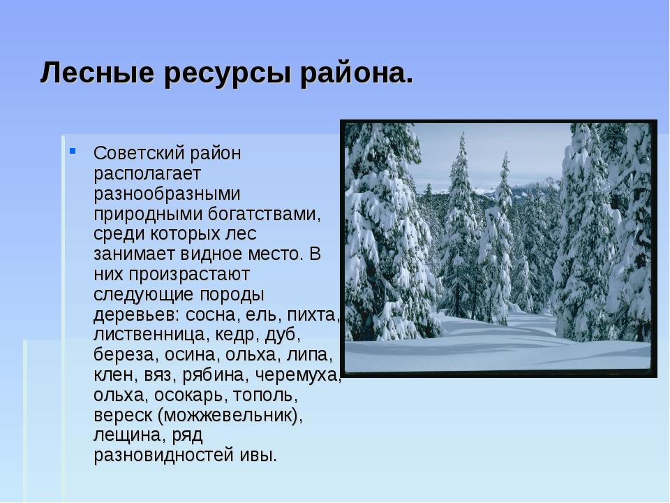 Лесные ресурсы района. Советский район располагает разнообразными природными...
