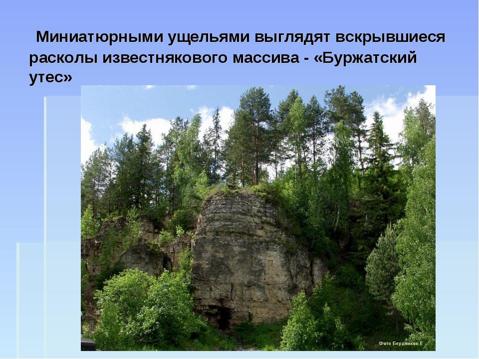 Миниатюрными ущельями выглядят вскрывшиеся расколы известнякового массива -...