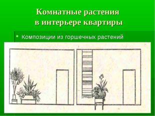 Комнатные растения в интерьере квартиры Композиции из горшечных растений