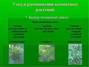 Уход и размножение комнатных растений Выбор почвенной смеси. Виды почвенной с