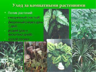 Уход за комнатными растениями Полив растений: ежедневный (частый) умеренный (