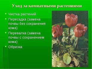 Уход за комнатными растениями Чистка растений Пересадка (замена почвы без сох