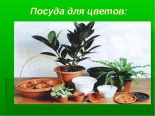 Посуда для цветов: