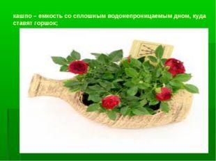 кашпо – емкость со сплошным водонепроницаемым дном, куда ставят горшок;
