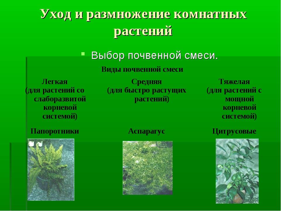 Уход и размножение комнатных растений Выбор почвенной смеси. Виды почвенной с...