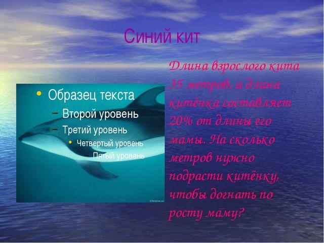 Синий кит Длина взрослого кита 35 метров, а длина китёнка составляет 20% от д...