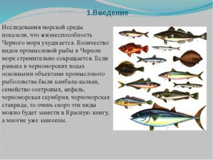 1.Введение Исследования морской среды показали, что жизнеспособность Черного
