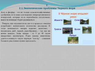 2. 2.1.Экологические проблемы Черного моря Азот и фосфор - это не только сель