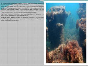 По результатам исследования загрязнения водоемов нефтепродуктами, Черное мор