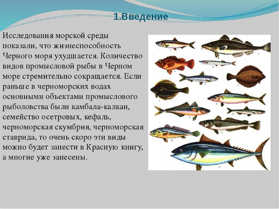 1.Введение Исследования морской среды показали, что жизнеспособность Черного...