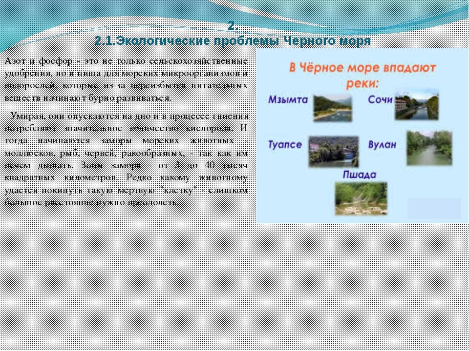 2. 2.1.Экологические проблемы Черного моря Азот и фосфор - это не только сель...