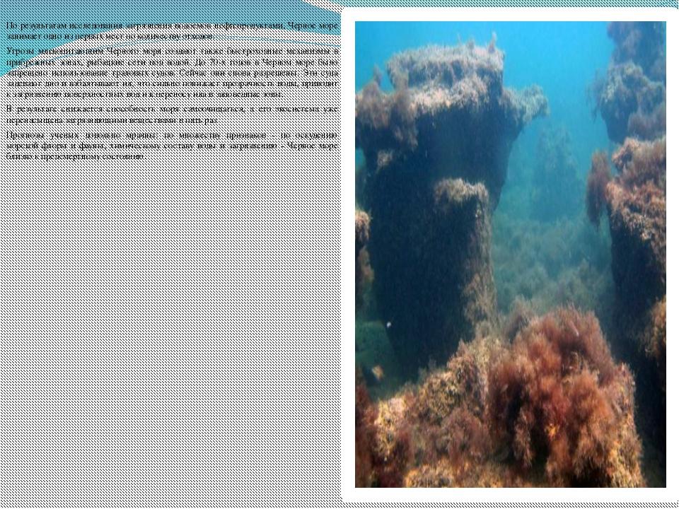 По результатам исследования загрязнения водоемов нефтепродуктами, Черное мор...