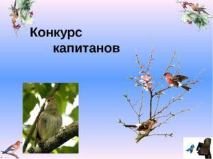 Конкурс капитанов Valya Valya