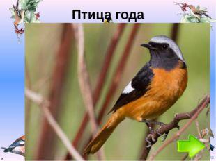 Птица года Год Птица 1996 Коростель 1997 Полевой жаворонок 1998 Серый журавль