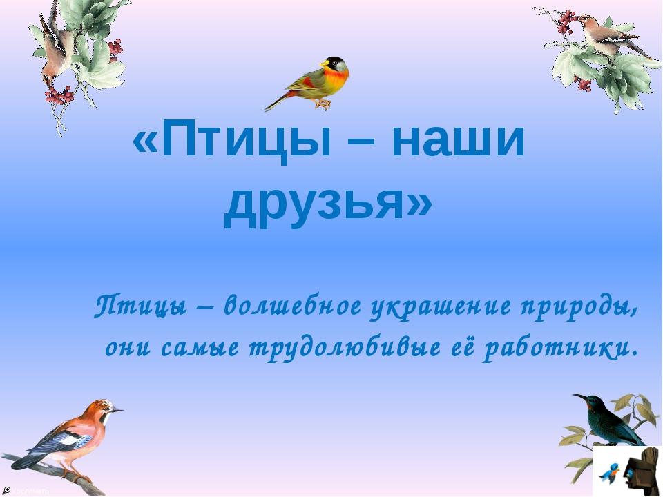 Птицы – волшебное украшение природы, они самые трудолюбивые её работники. «П...