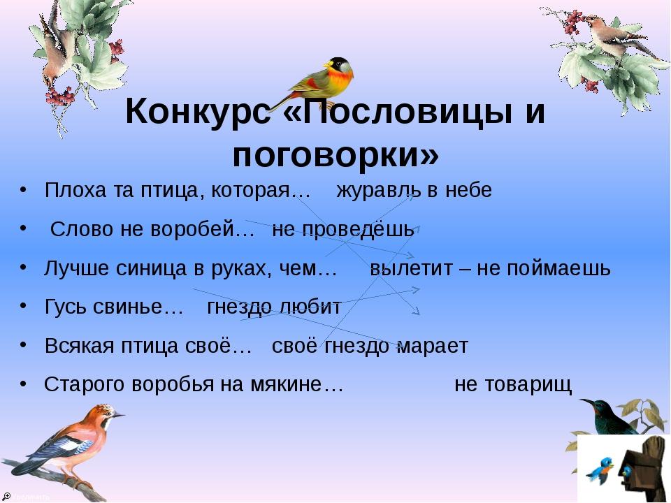 Конкурс «Пословицы и поговорки» Плоха та птица, которая… журавль в небе Сло...