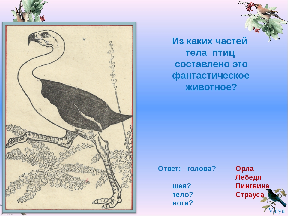 Из каких частей тела птиц составлено это фантастическое животное? Ответ: голо...