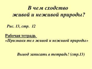 В чем сходство живой и неживой природы? Рис. 13, стр. 12 Рабочая тетрадь «При