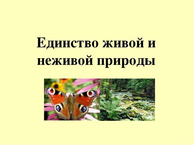 Единство живой и неживой природы