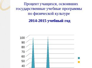 Педагогическая деятельность Процент учащихся, освоивших государственные учебн