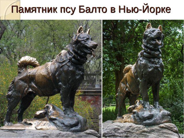Памятник псу Балто в Нью-Йорке