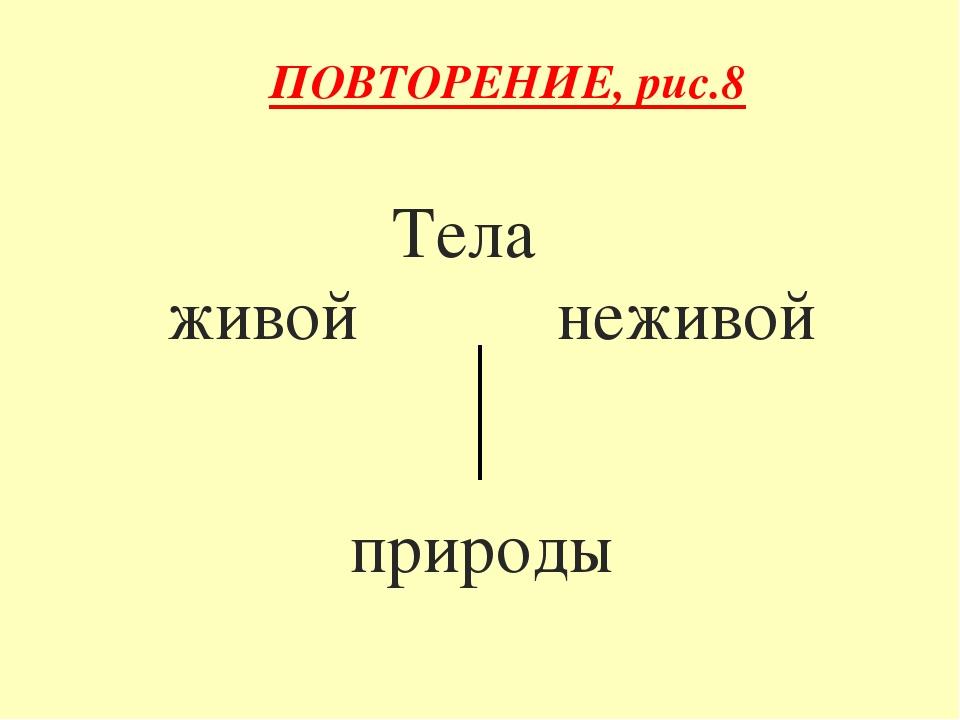Тела живой неживой природы ПОВТОРЕНИЕ, рис.8