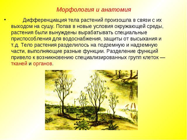 Дифференциация тела растений произошла в связи с их выходом на сушу. Попав в...