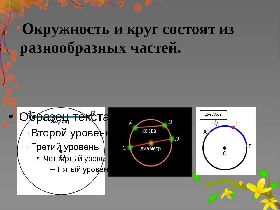 Окружность и круг состоят из разнообразных частей.
