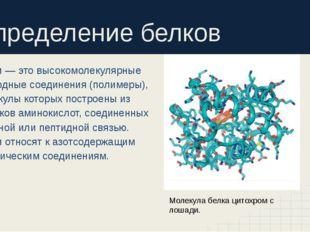 Определение белков Белки — это высокомолекулярные природные соединения (полим