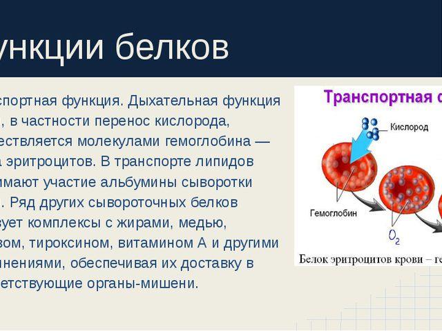Функции белков Транспортная функция. Дыхательная функция крови, в частности...