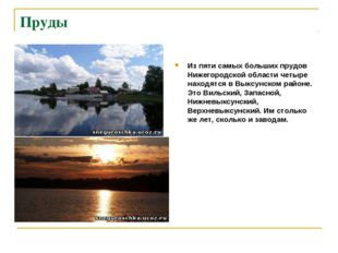 Пруды Из пяти самых больших прудов Нижегородской области четыре находятся в В