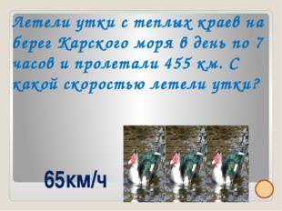 Площадь НАО примерно 177 тыс.кв.м, 76% составляет тундра. На юге округа 15 %