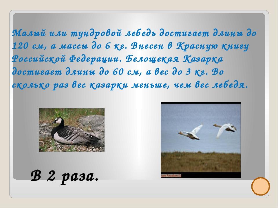 266-302 Частые туманы, особенно в теплое время и на побережье от 64-100 дней...