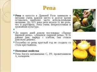 Репа Репа и капуста в Древней Руси занимали в питании очень важное место и до