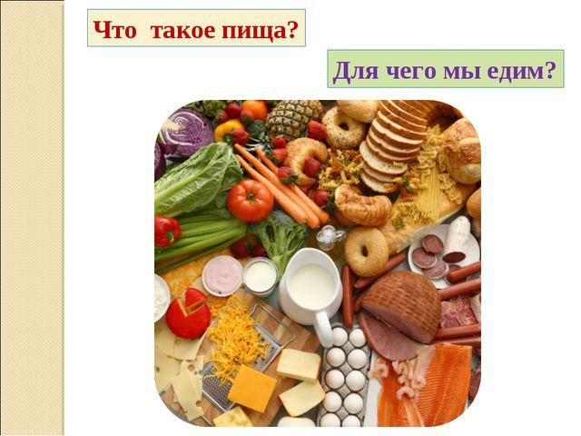 Что такое пища? Для чего мы едим?