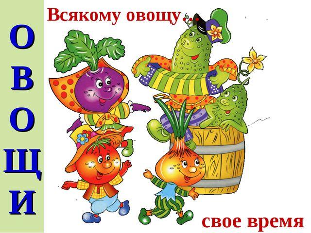О В О ЩИ Всякому овощу… свое время