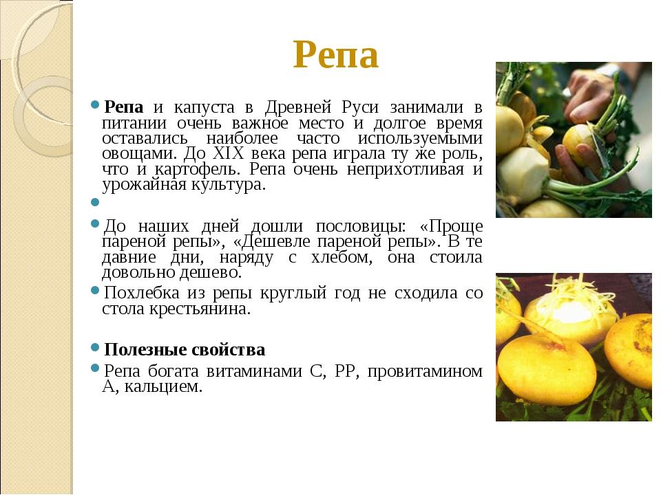 Репа Репа и капуста в Древней Руси занимали в питании очень важное место и до...