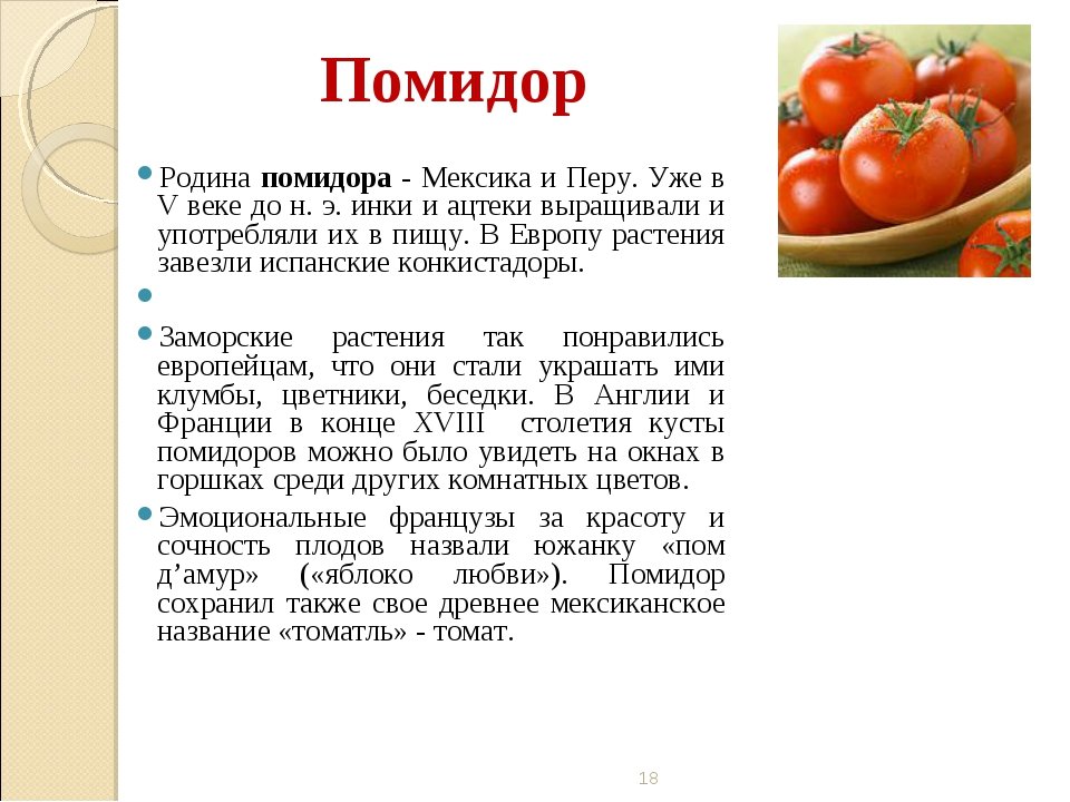 Помидор Родина помидора - Мексика и Перу. Уже в V веке до н. э. инки и ацтеки...