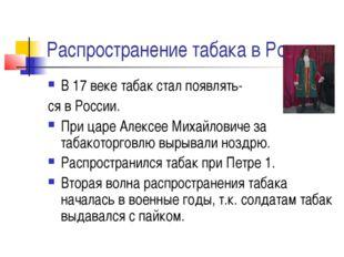 Распространение табака в России В 17 веке табак стал появлять- ся в России. П