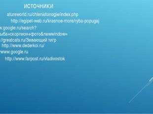 источники http://greatcats.ru/Зевающий тигр http://www.dederkoi.ru/ //www.goo