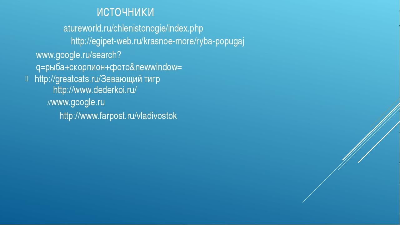 источники http://greatcats.ru/Зевающий тигр http://www.dederkoi.ru/ //www.goo...