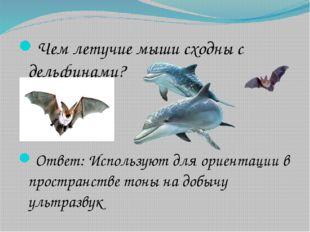 Чем летучие мыши сходны с дельфинами? Ответ: Используют для ориентации в прос