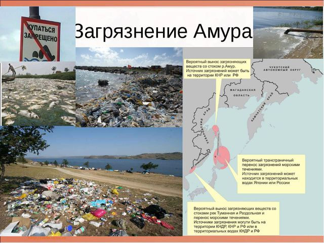 Загрязнение Амура