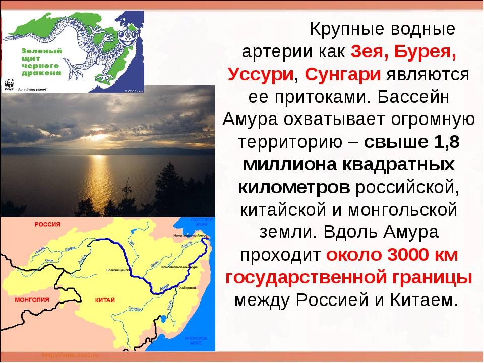 Крупные водные артерии как Зея, Бурея, Уссури, Сунгари являются ее притоками...