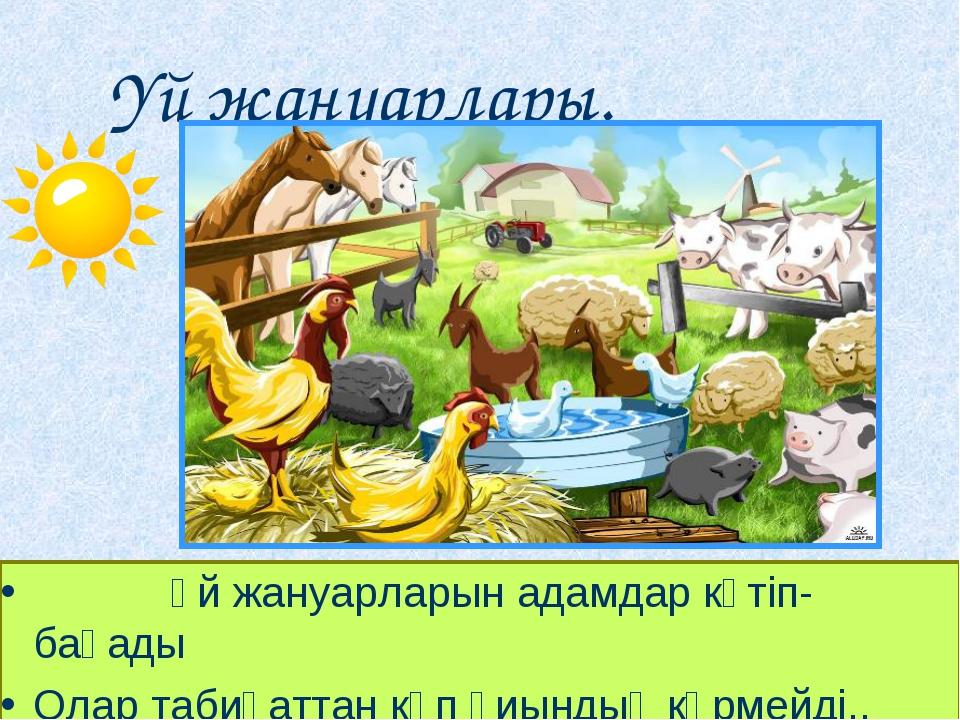 Үй жануарлары. Үй жануарларын адамдар күтіп-бағады Олар табиғаттан көп қ...