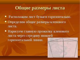 Общие размеры листа Расположим лист бумаги горизонтально. Определим общие раз