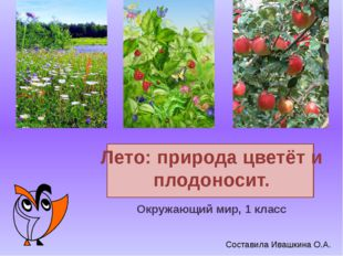 Лето: природа цветёт и плодоносит. Окружающий мир, 1 класс Составила Ивашкин