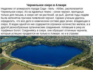 Чернильное озеро в Алжире Недалеко от алжирского города Сиди - бель - Аббес,